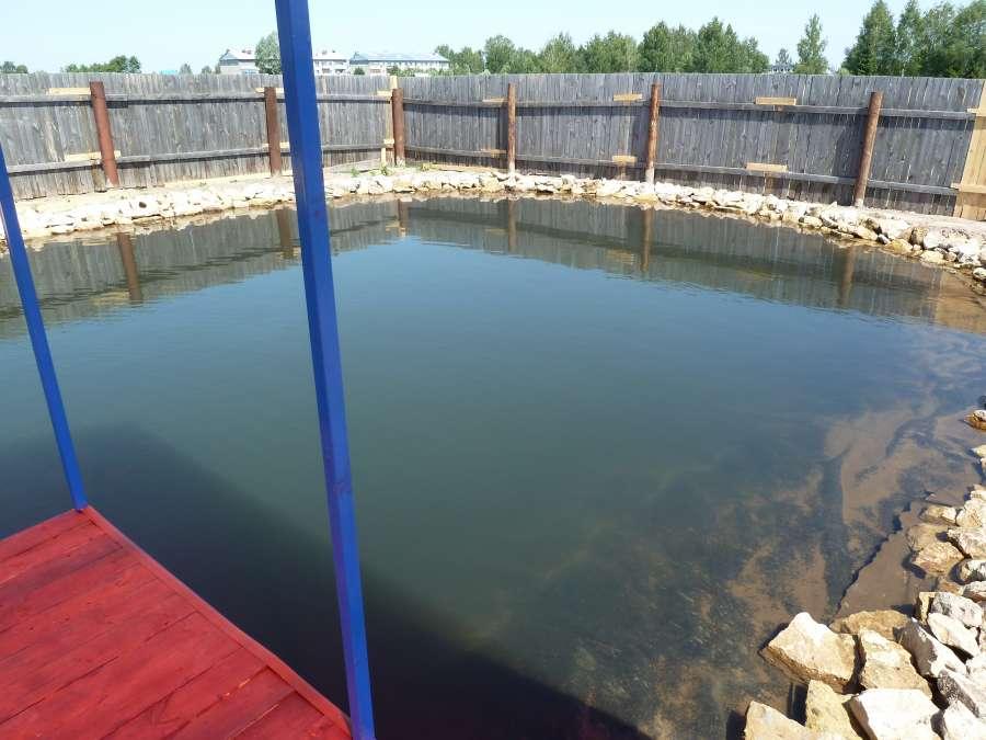 Однако в подобных водоемах невозможно спустить воду, поэтому для предотвращения цветения воды и загрязнения дна илом нужно следить, чтобы популяция рыб не превышала норму.